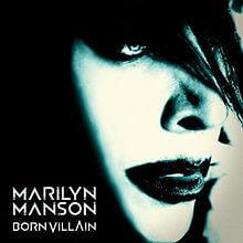 cover220px-bornvillain